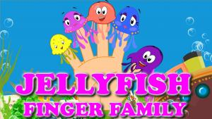 Jellyfish Finger Family