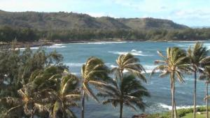 Hawaii Named The Healthiest State In America