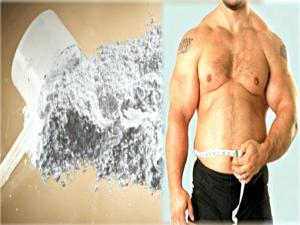 Does Creatine Affect Fat Loss Can You Take Creatine While Cutting