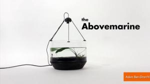 High Tech Fishbowl Lets Your Fish Get Around
