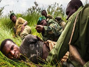 Virunga National Park Collapse