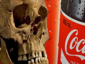 Thelip Daily Soda Intake
