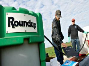 Monsanto Roundup Cancer Link Explored