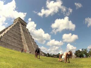 Mexico Yoga Training Retreat