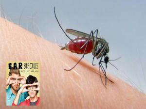 Do Mosquitos Prefer Some People