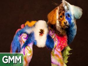 10 Unbelievable Pet Hairdos