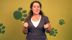 A Guide To Describing People Using British Sign Language 10039844 By Videojug