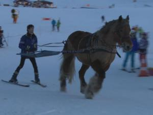 Skijoring The Vintage Trend Of Winter Sports