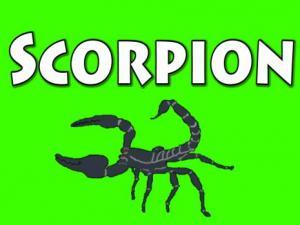 Halloween Special Part 2 Scorpion
