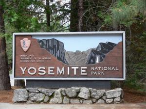 The Wonderment Of Yosemite National Park
