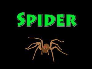 Halloween Special Part 1 Spider
