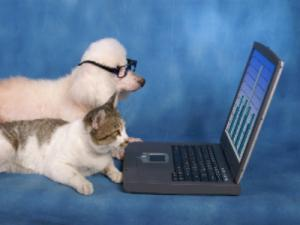 Pets With Computers