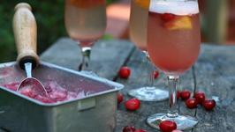 Cranberry Sorbet Sangria