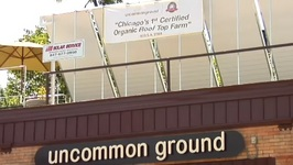 The First Certified Organic Rooftop Garden In The U.S