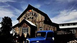 Apple Picking at Kuiper's Family Farm - Food Travels