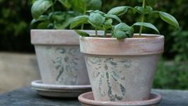 Distressed Pots