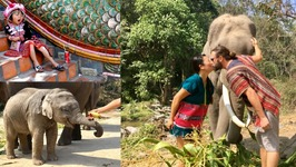 Thailand 2017 - Bangkok And Chiang Mai Food, Elephants, Temples