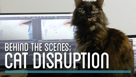 Cat Disruption  HTME Behind the Scenes