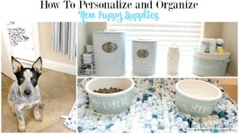 How to Organize for a New Puppy