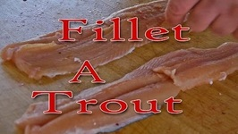 How To Fillet A Trout