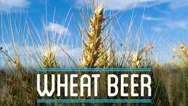 Wheat Beer  How to Brew Everything