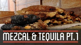 Mezcal (13)  How to Brew Everything Mezcal and Tequila