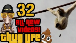 All New Videos - 32