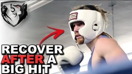 How to Recover After Taking a Big Hit in a Fight