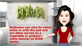 Preparing, Cooking and Using Soybeans