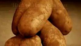 Idaho Mashed Potatoes or Pommes Duchesse