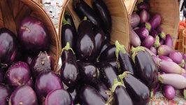 Seasons - Eggplant