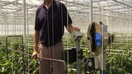 Greenhouse Growing Integrated Pest Management