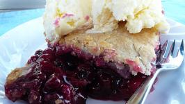 Saskatoon Pie With Pastry