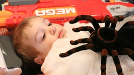 Nerf War  Giant Spiders Attack