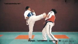 Taekwondo sparring 101 training course (completed)
