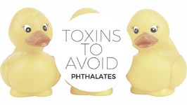 Toxins to Avoid 2 - Phthalates, What They Are and How to Avoid Them