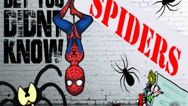 Amazing Spider Facts - Incredible Facts About Spiders