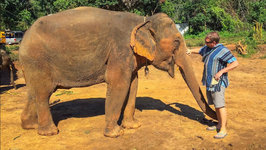 Elephant Sanctuary Chiang Mai, Thailand