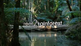 Lady Elliot And Fraser Island - Reef to Rainforest Adventure