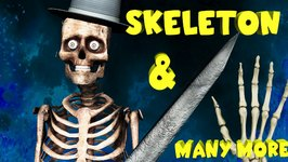 Crazy Skeleton Finger Family And Many More  3D Finger Family Collection  Halloween