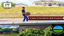 A Taste Of The World's Best Prosecco With Masottina Winery And Wine Oh TV