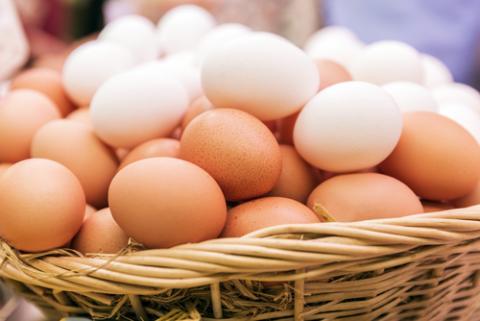 Egg 2
