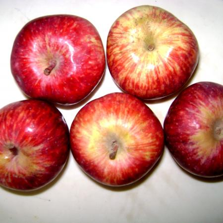 Indian Apples