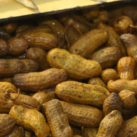 Bloiled Peanuts