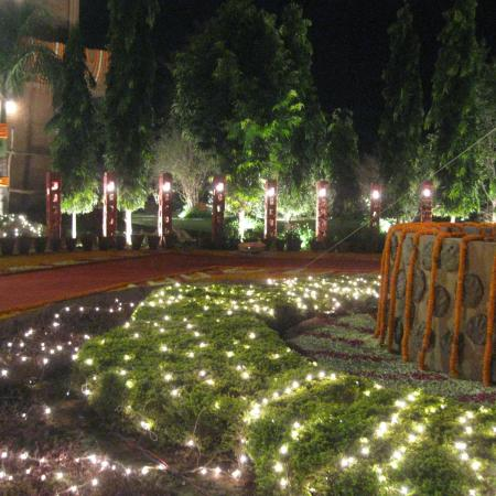 Indian Wedding Decoration - Lawn with Lighting and Flowers