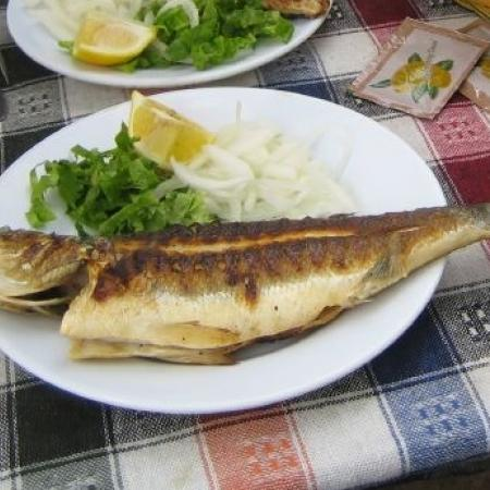 Grilled mackarel