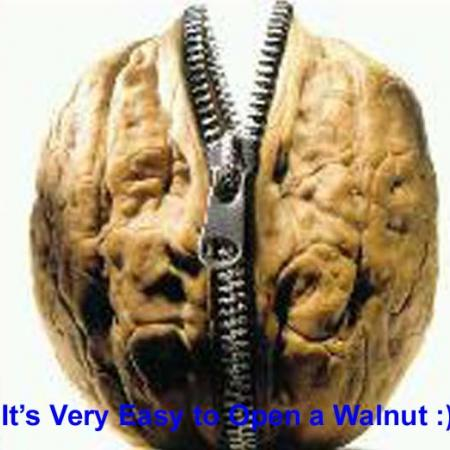 Open A Walnut