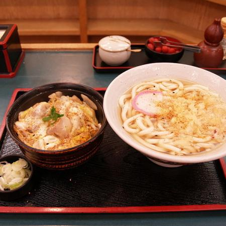 Udon and oyakodon