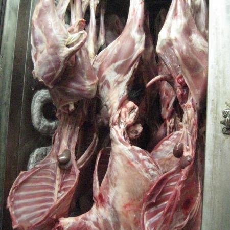 Frozen Mutton