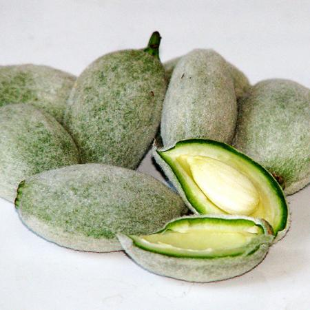 Green Almonds